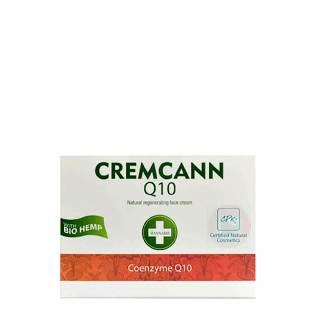 kleine versie Dagcrème Q10